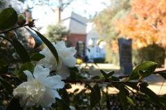 Smith-Gilbert Gardens Event Photos