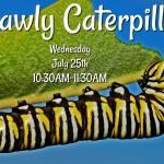 Garden Stories July 25_1