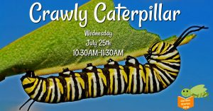 Garden Stories: Crawly Caterpillar @ Smith-Gilbert Gardens | Kennesaw | Georgia | United States