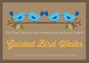 Guided Bird Walk @ Smith-Gilbert Gardens