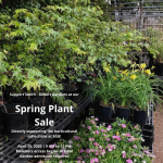 Spring Plant Sale 2020 graphic