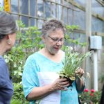 Spring Plant Sale customer shopping for plants